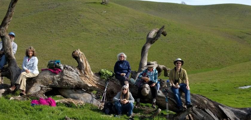 Group Hike Photo