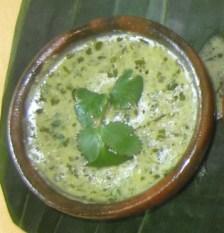 avocado, cilantro, sauce