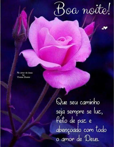 Boa noite com uma linda rosa, mensagens de boa noite!