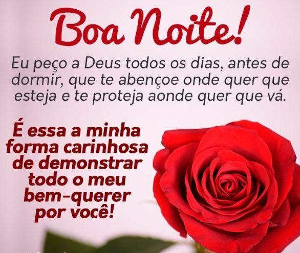Boa noite e uma linda rosa maravilhosa para você