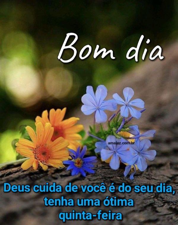 Bom dia Deus cuida de você e do seu dia