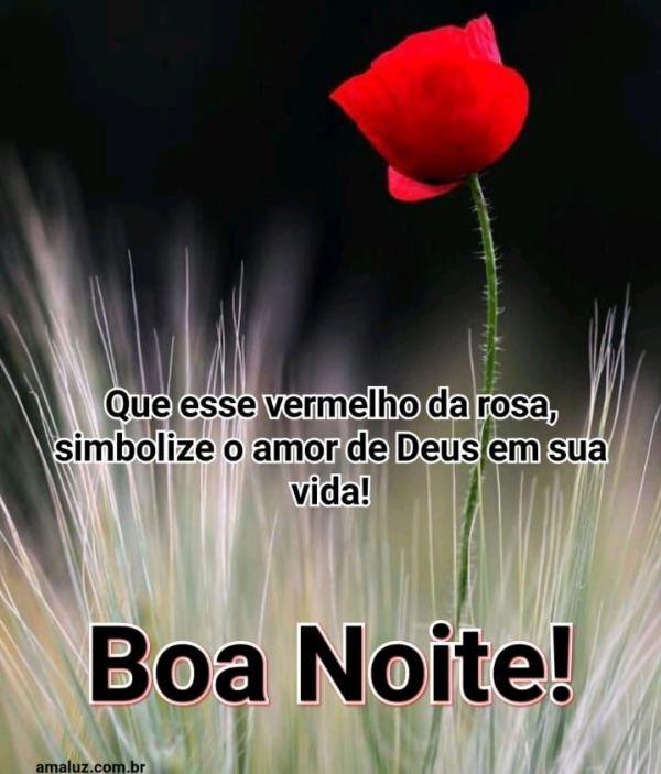 boa noite com o amor de Deus em sua vida
