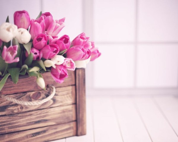 cachotinho de lindas flores