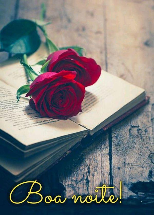 flor em um livro aberto