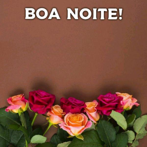 flores com fundo marrom e mensagem de boa noite