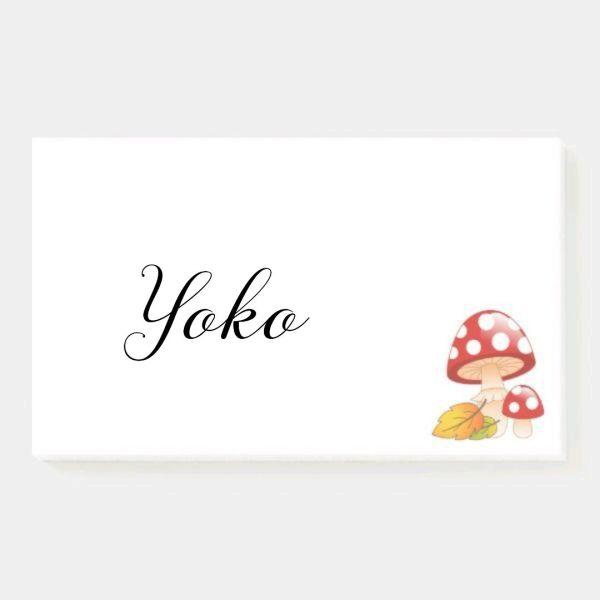 Yoko nome de uma linda chinesa