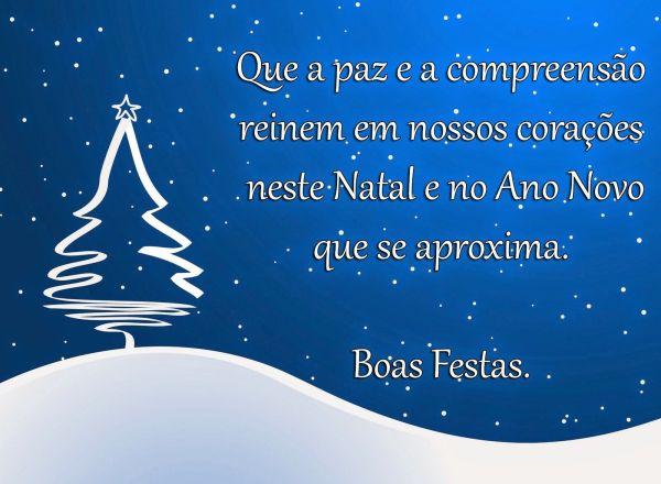 que a paz esteja presente neste natal e no ano novo boas festas