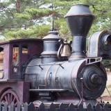 広島県「神石高原ティアガルテン」広い原っぱにツリーハウスで遊ぼう!セカオワの汽車もあるよ
