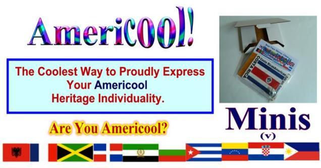 Americool Heritage Mini Flags