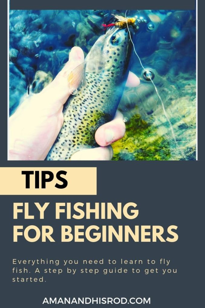 fly fishing for beginners tips and advice