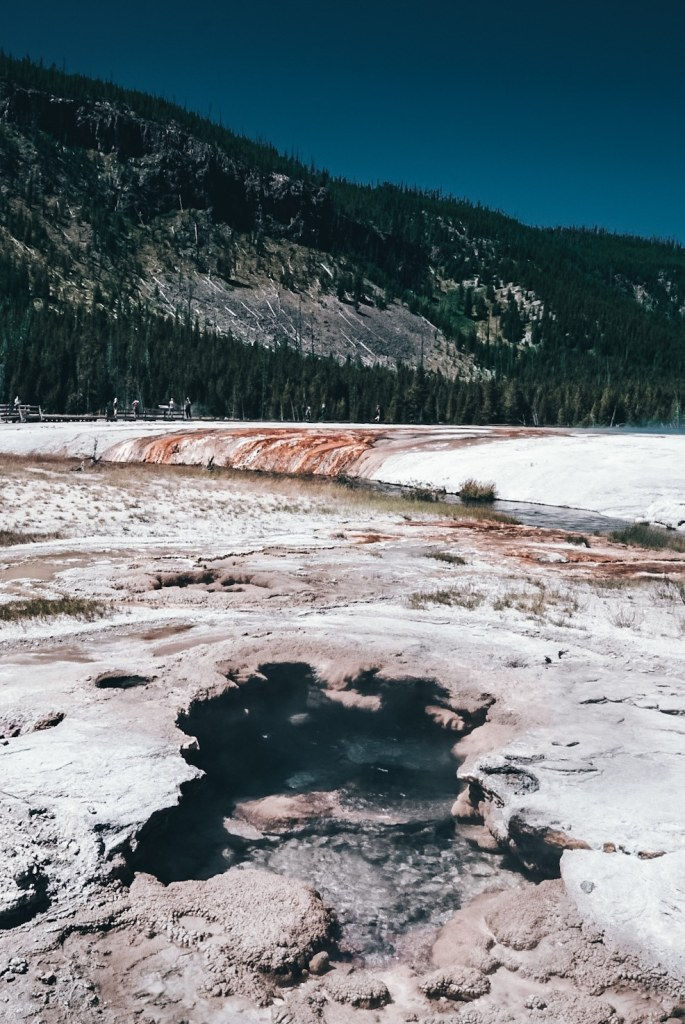 Cliff Geyser at Black Sand Basin of Yellowstone