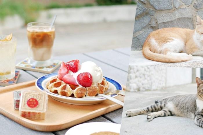 台南下午茶『台南老宅蜂大咖啡』在貓巷的療癒下午茶時光,少女系野莓鬆餅來啦!台南中西區|台南美食