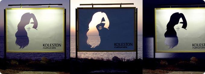 Koelston Hair Color