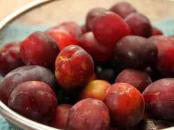 amandacook.me Too much fruit? Soak it in brandy!