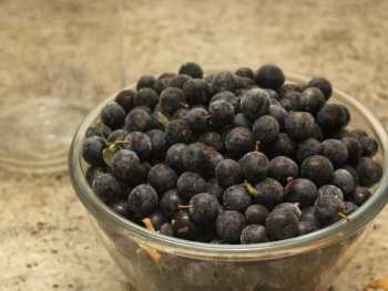 How to Make Sloe Gin