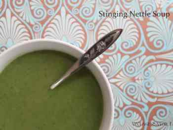 amandacook.me Stinging Nettle Soup Recipe