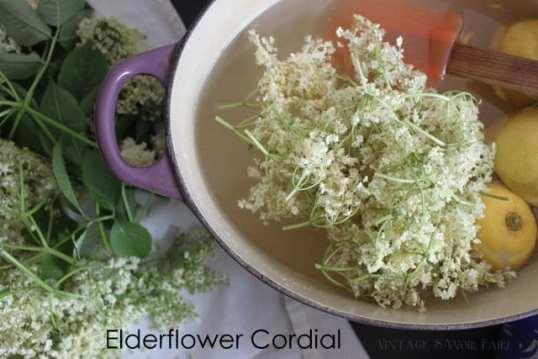 making elderflower cordial