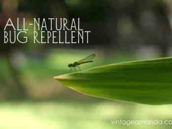 Natural bug repellent recipe