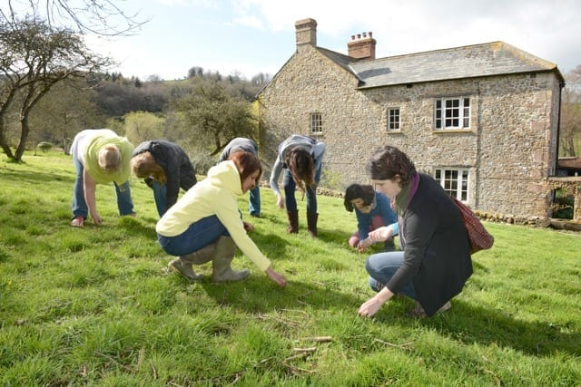 Foraging for Natural Beauty Ingredients at Trill Farm