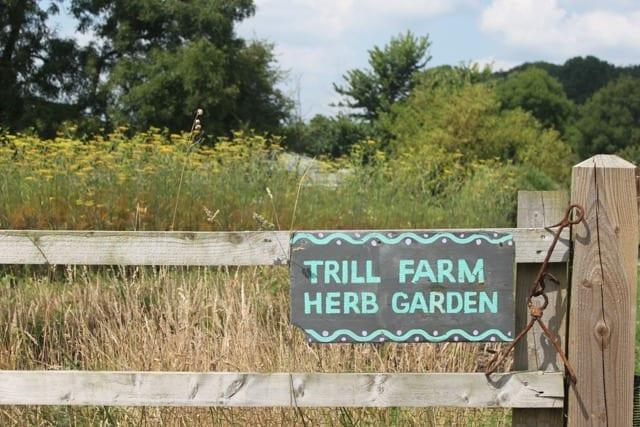 Trill Farm Herb Garden