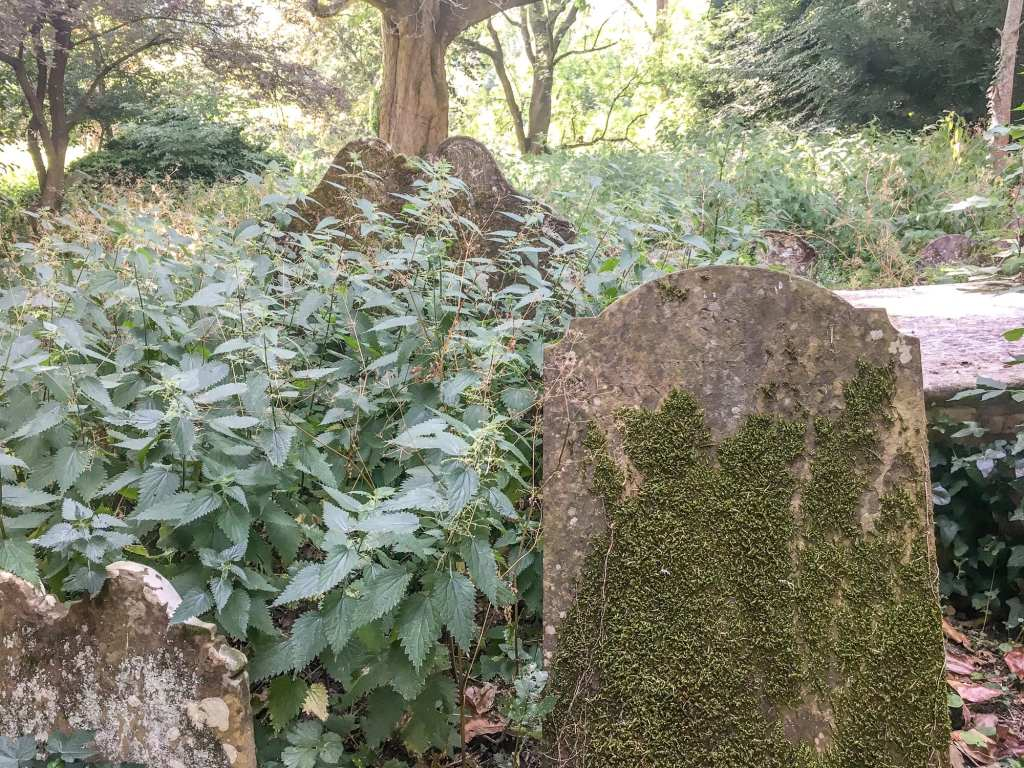 Gravestones and Nettles at St. Marys Churchyard
