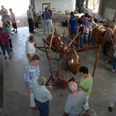 amanda_feher_exhibitions_sculpture_public_art_copper_meat_ant_local_launch2