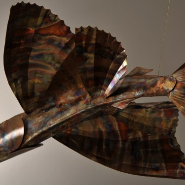 amanda_feher_sculpture_public_art_copper_and_stainless_steel_Flight_School_Flying_Fish_Strand Ephemera_Fish4.1