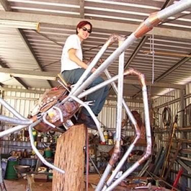 amanda_feher_sculpture_public_art_Oralia_spider_pioneer_park_Townsville_City_Council_progress
