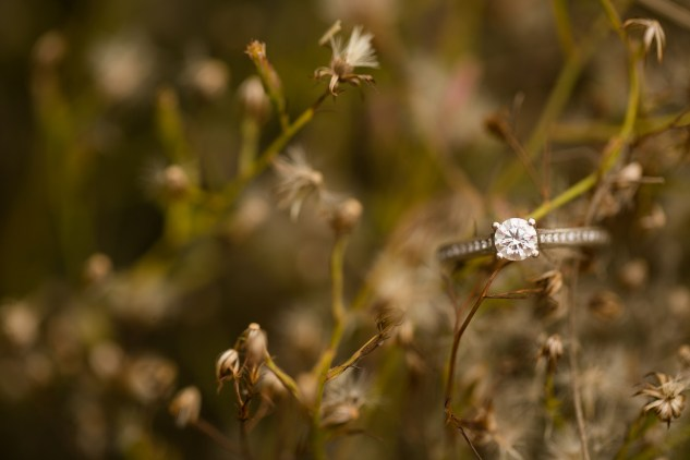 smithfield-southern-rustic-engagements-12