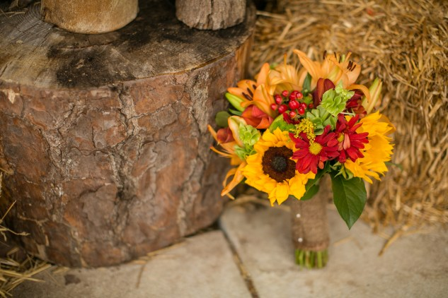 virginia-southern-fall-farm-wedding-photo-18