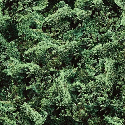 ivy-grid-2-flattened