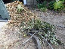 Woody material - I didn't use the bigger branches