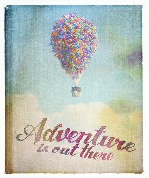 """Adventure is out there"""