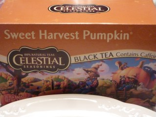 Pumpkin Tea!
