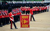 LONDON, ENGLAND - JUNE 13: The Queen's Guards display The Colour during the annual Trooping The Colour ceremony at Horse Guards Parade on June 13, 2015 in London, England. (Photo by Stuart C. Wilson/Getty Images)