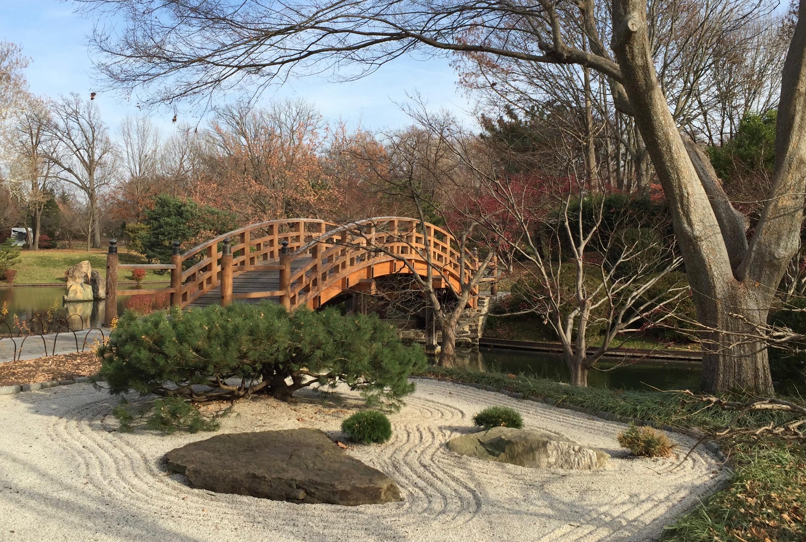 Japanese Garden – Amanda Markel