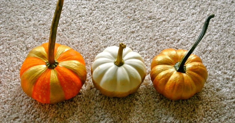 Decorating Mini Pumpkins
