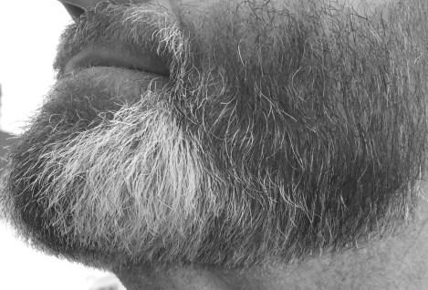 a cipper-over-comb beard trim in black & white