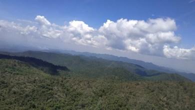 Photo of Fortalecen normatividad ambiental en el estado
