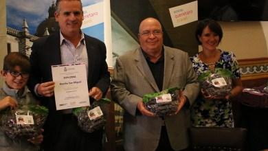 Photo of Empaques de uva promoverán Querétaro