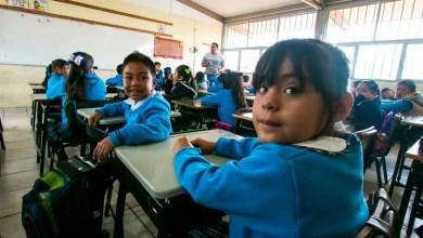 Photo of Reactivarán clases en Campeche; pero antes vacunará a 20 mil docentes