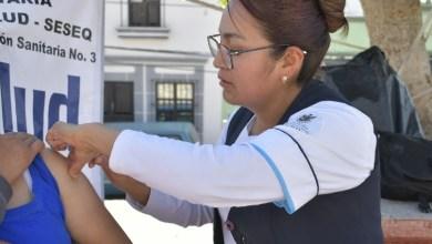 Photo of Viable adelantar en Querétaro vacunación contra influenza
