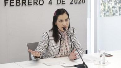 Photo of Impulsa Elsa Méndez iniciativa para que trabajen más los diputados locales