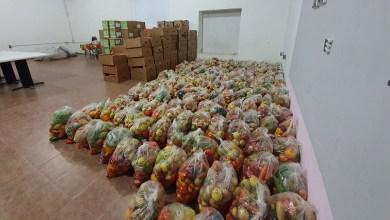 Photo of Gestiona Jalpan, apoyo alimentario para 200 familias