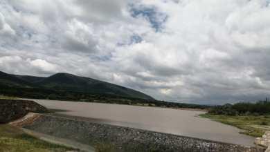 Photo of Apoyos y lluvias salvan al sector agropecuario