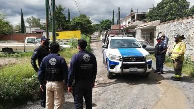 Photo of Se mantiene la búsqueda del Puma en Granjas Banthí