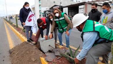 Photo of Elvia Montes inicia obras en cabecera de Ezequiel Montes