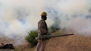 Photo of Llama SESEQ a erradicar mosquitos transmisores de enfermedades