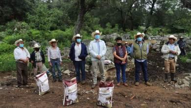 Photo of SEDEA entrega fertilizante orgánico y semillas en Jalpan de Serra