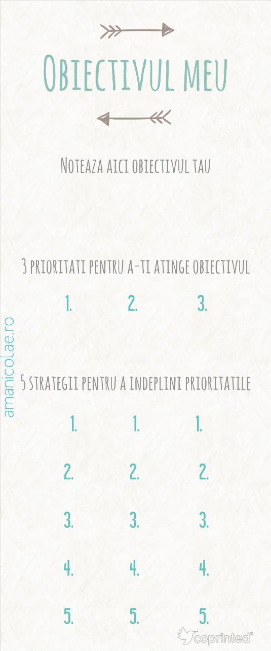 plan de indeplinire a obiectivelor